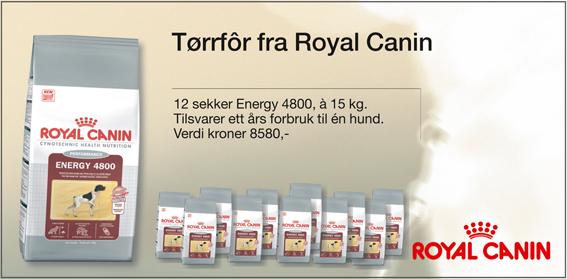 verve_royalcanin.jpg